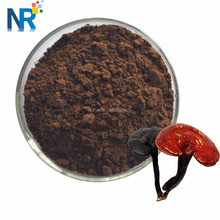 High Quality Herbal Powder Reishi Mushroom Powder