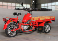 Three Wheel Tricycle With Motor / Gasoline Motor Tricycle At Competitive Price