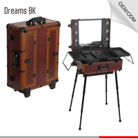 Guangzhou factory professional aluminum makeup case trolley rolling beauty case with light