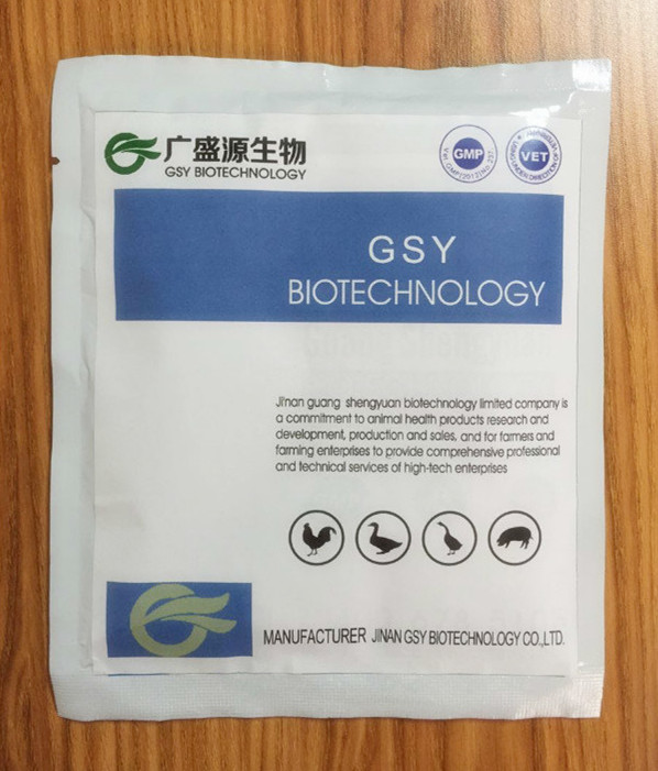 GSY Amoxicillin animal water soluble powder 10% synthetic drugs