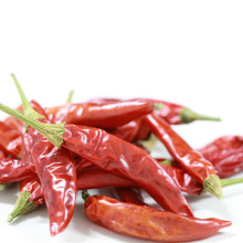 Hot sale high quality export chili