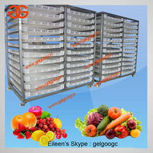 Automatic Fruit Dehydrator