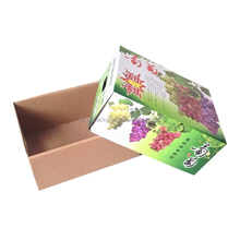 Folding Fresh Fruit Packing Box /vegtable Packaging /Grape Corrugated Carton Packing Box