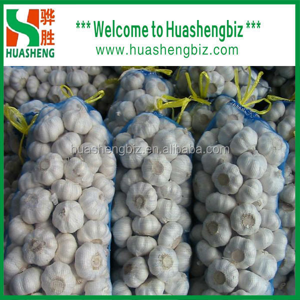 China fresh normal white garlic