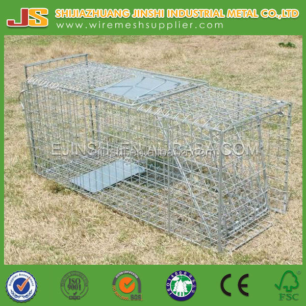 "86""x12""x12""collapsible animal trap cage for possum"
