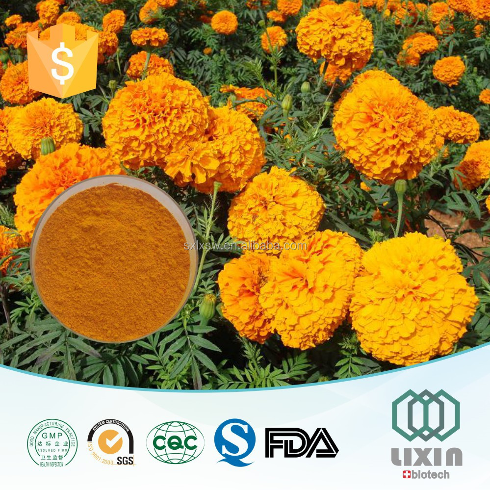 hot selling trade assurance natural OEM Marigold Flower Extract Lutein tablets capsule : 5%-98% HPLC ZEAXANTHIN 5% , 20% , 40%