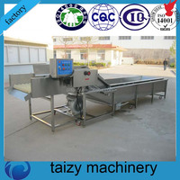 Food Processing Industrial Apple Washing Machine Price