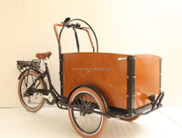Showy cargo motor tricycle closed cabin cargo tricycle 3 wheel