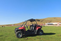 China factory New UTV 200cc youth side by side 4wd