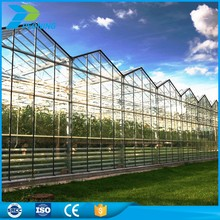 Wholesale products commercial greenhouse alveolar polycarbonate opal flexible solar sheets