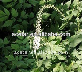 Best Price and Pure Black Cohosh P.E .BLC-Tritepene2.5%,8% HPLC