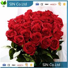 cheap Factory Wholesale Single Stem decorative flower real touch artificial rose flower red rose
