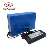 Customized Li Ion Lifepo4 48V 60Ah 40Ah 20Ah Lithium Battery Pack for Electric Bicycle