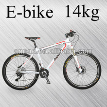 electric bike with batteries lithium