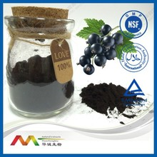 Herb Anti-Cancer Products Blueberry Extract/ 25% Anthocyanidins