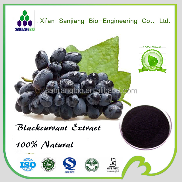Black Currant Extract Black Currant Seed Extract(5%-40%Anthocyanins)