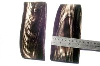 Domestic buffalo horn middle tips cut white streaks plates