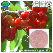 Health Food Natural Organic Acerola Cherry Extract Powder