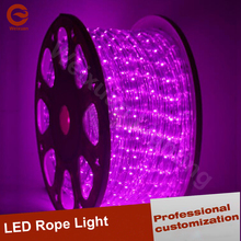 F5 LED Rope lighting For Holiday Decoration Outdoor Waterproof 220V