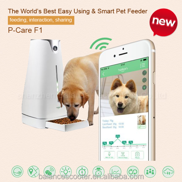 Pet Feeder Station- Big Capacity Hoison Automatic Pet Food Dispenser