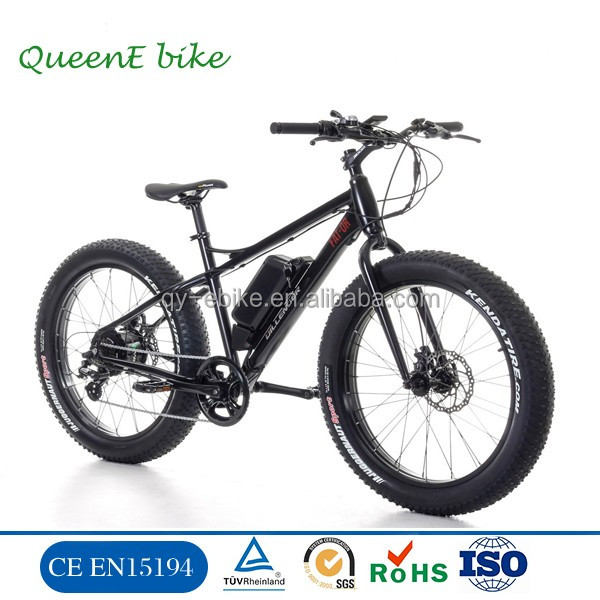 QUEENE/OEM brand HOT SALE 48v 1000w snow electric bikes,fatbike electric 1000w