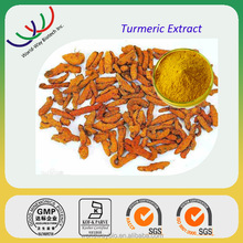 Turmeric extract Free samples, HACCP GMP KOSHER certified factory bulk wholesale turmeric root extract powder 95% curcumin