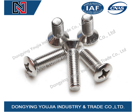 DIN966 Stainless Steel Cross Recessed Raised Countersunk Head Screw