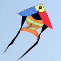 Color fish kites for sale