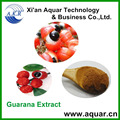 Guarana Seed P. E. and natural product extract and free sample