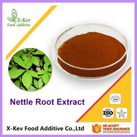 Organic Nettle Root Extract Powder 90% 95% Beta-sitosterol In Bulk