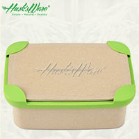 Fashional Eco Friendly lunch box for kids