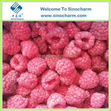 Good quality Frozen Raspberry