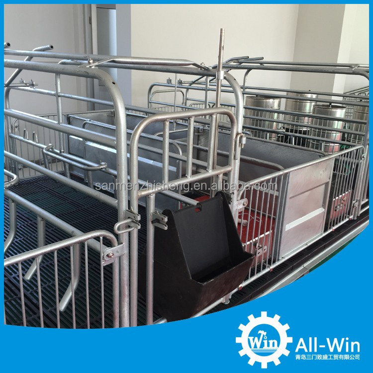 professional high process sow farrowing crate for pigs