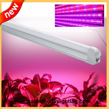 Led grow lamp 30w 4ft 1.2m intergrated T5 T8 led tube lamp