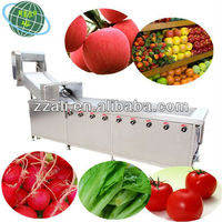 Stainless steel full automatic fruit and vegetable cleaning machine for sale