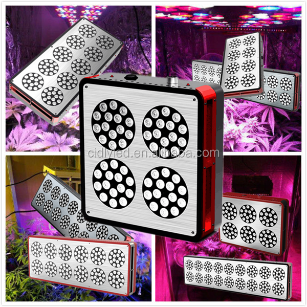 CIDLY LED Grow Light 180~900W With CE ROHS Certificate For Commercial Grow Greenhouse Project hot in USA UK Australia Aquaponic