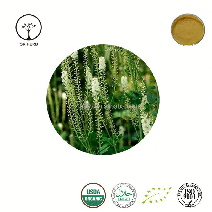 Best quality black cohosh extract black cohosh root extract powder