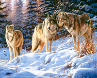 GZ661- 40*50 Modern Decorative Picture 3 wolf Animal diamond Painting On Canvas