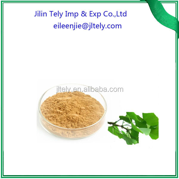 Natural Ginkgo Biloba Extract with 24% Flavonoides/ 6% Lactone CAS NO.90045-36-6