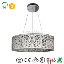 Zhongshan Modern Art Silver LED Iron Polishing Light With Decor
