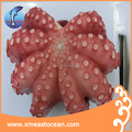 Best selling delicious frozen seafood octopus