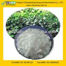 GMP Manufacturer Supply Natural Borneol Plant Extract
