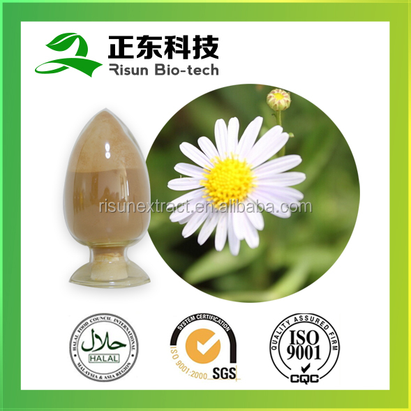 100% natural plant extract 10:1 Chamomile Extract Antioxidant Chamomile Extract