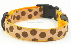 electric dog collars small dogs