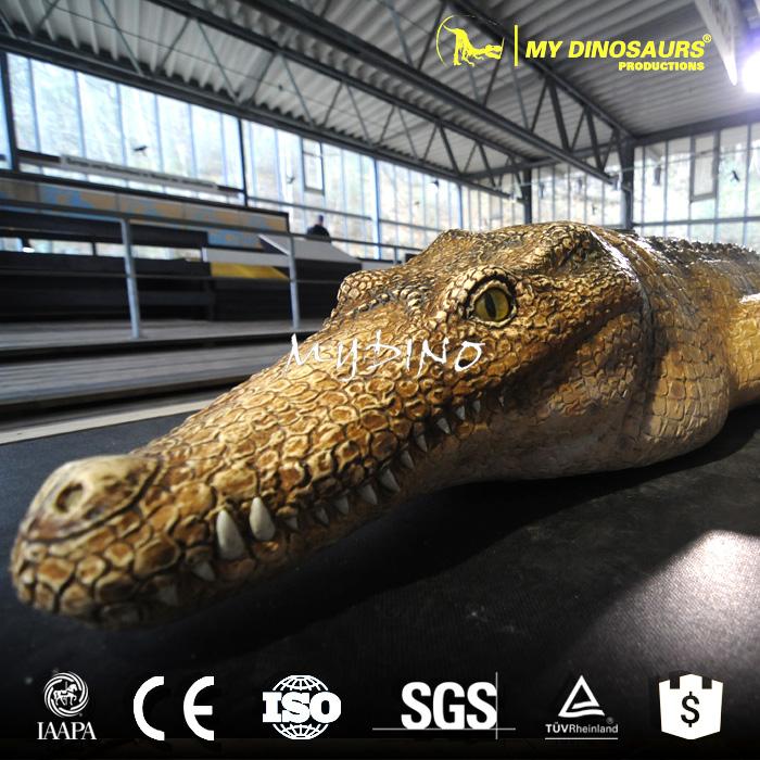 dinosaur animal.jpg