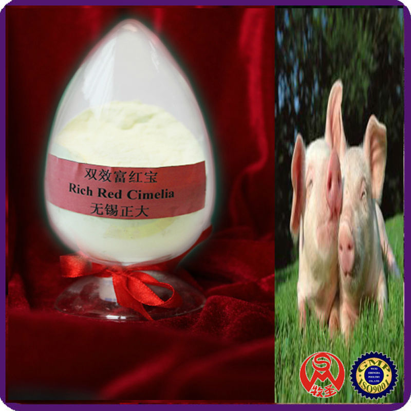 rich red cimelia (Double Effect) fatteners for pigs