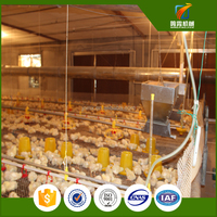 Birdsitter ISO9001 Qualified Broiler Chicks Rate