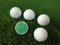 2 Piece large golf ball for wholesale