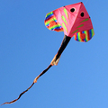 colorful manta ray design kite