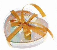 Dongguan heart shaped clear PVC box with ribbons tie
